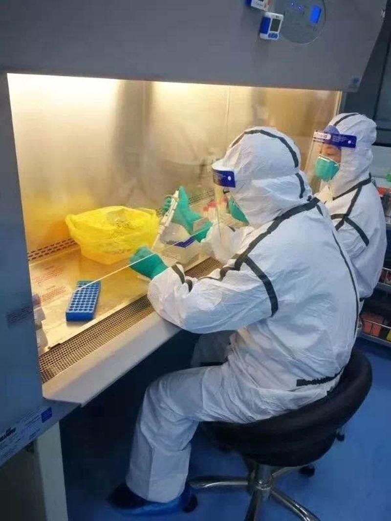 这个实验室担负着新冠病毒的核酸检测工作!